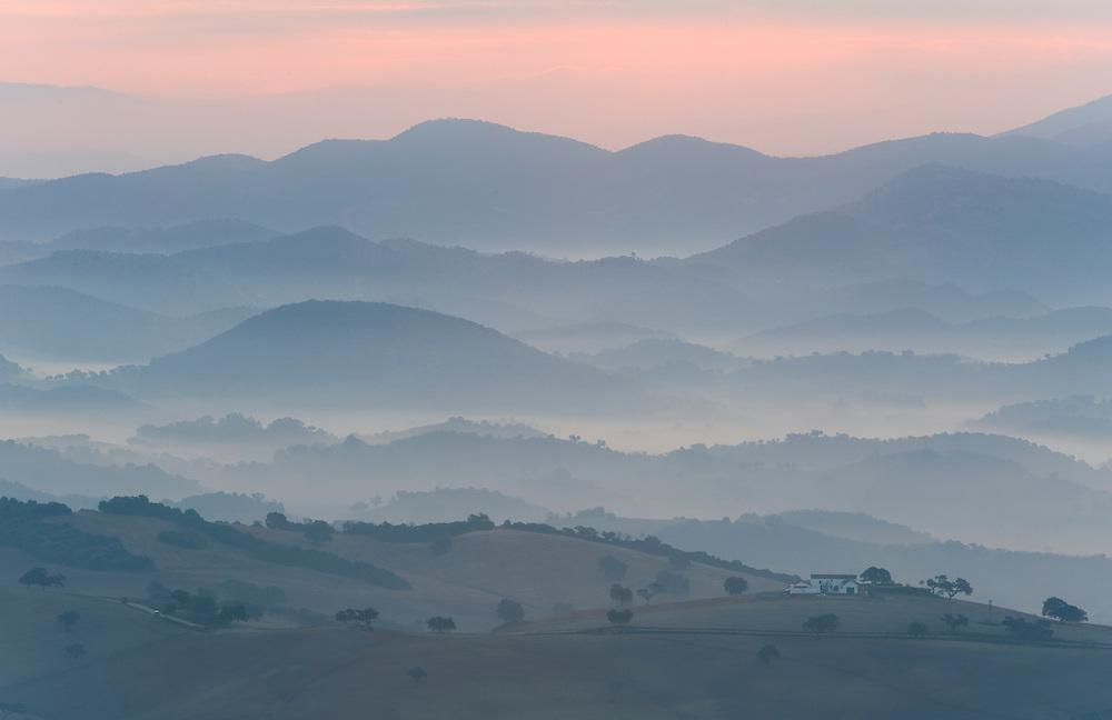 The Andalucian campagna near Montellano at dawn