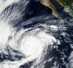 October 2, 2018 - Mexico - As of the evening of October 1, the center of Rosa was now about 50 mi (80 km) west-northwest of Punta Eugenia, Mexico, and was bringing flooding rains to portions of Baja California, Sonora, and the southwestern United States, according to the NCH. Maximum sustained winds were at 40 mph (65 km/h) and was moving north northeast at 10 mph (17 km/h). Rosa is expected to bring large swells to the coastlines and significant rain, with potential flooding, from Baja Peninsula to the southwestern United States over the next several days. (Credit Image: © MODIS/ZUMA Wire/ZUMAPRESS.com)