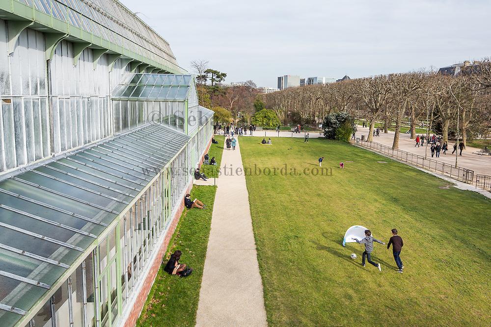 Jardin des Plantes // Jardin des Plantes garden