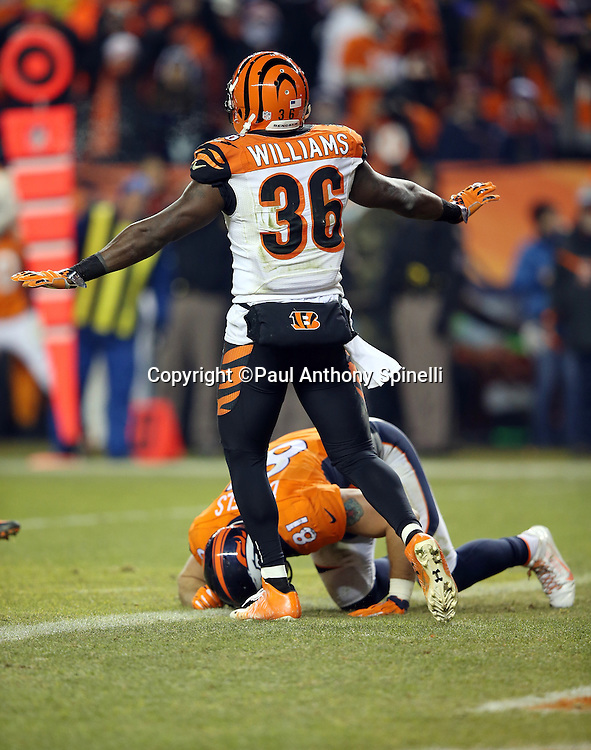 Denver Broncos tight end Owen Daniels (81) lies on the ground in pain as Cincinnati Bengals cornerback Shawn Williams (36) waves his arms signaling no catch after Daniels tries to catch the ball near the end zone during the 2015 NFL week 16 regular season football game against the Cincinnati Bengals on Monday, Dec. 28, 2015 in Denver. The Broncos won the game in overtime 20-17. (©Paul Anthony Spinelli)