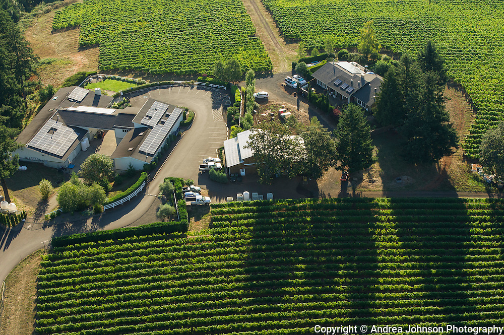 Aerial view over Lange winery and estate vineyard, Dundee Hills, Willamette Valley, Oregon