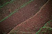A farmer cultivates his fields near Jinghong in Xishaungbanna, China.