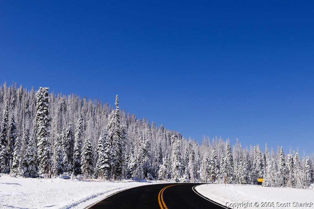 A beautiful blue sky is the backdrop for this picture of Utah showing a two lane road winding through the snow covered pine trees. Missoula Photographer