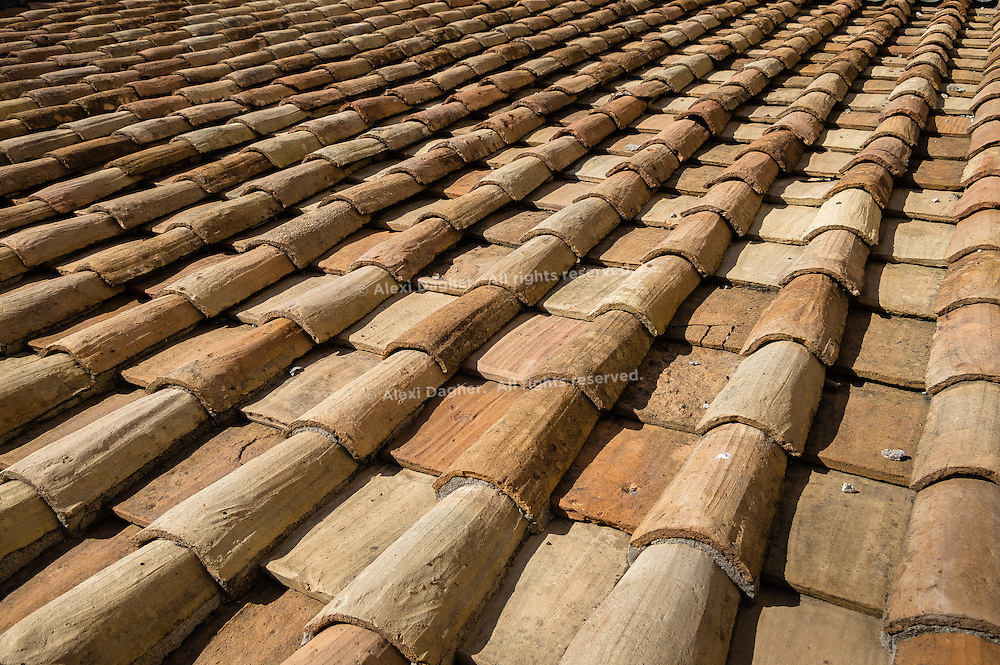 Saint Angelo castle roof shingles - Rome, Italy 2014
