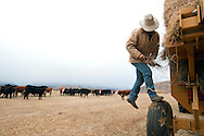 PRICE CHAMBERS / NEWS&amp;GUIDE<br /> Chase Lockhart stops to load another roll of hay into the machine Friday at the Lockhart Cattle Company.
