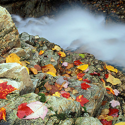 Fall in New England. Waterfalls. Pearl Cascade, on the Avalon Trail near Crawford Notch.  White Mountain N.F., NH