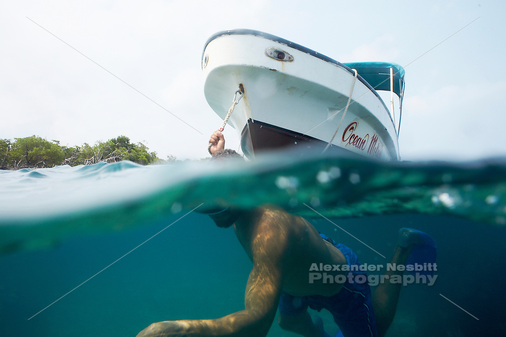 Belize, Central America - Belizian guide swims while towing the snorkeling tour boat by hand to reposition it near the group.