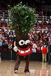March 19, 2011; Stanford, CA, USA;  The Stanford Cardinal tree mascot performs during the first half of the first round of the 2011 NCAA women's basketball tournament against the UC Davis Aggies at Maples Pavilion.