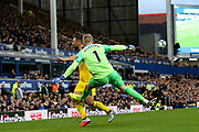 Everton goalkeeper Jordan Pickford (1) clears from Crystal Palace midfielder James McArthur (18) during the Premier League match between Everton and Crystal Palace at Goodison Park, Liverpool, England on 21 October 2018.