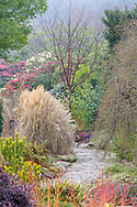 The colourful Winter Garden at Bodnant Garden, North Wales, photographed in early morning