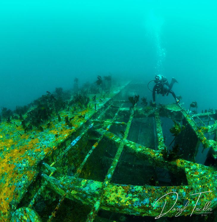 Rena shipwreck at 33 metres on the astrolabe reef. Tauranga.