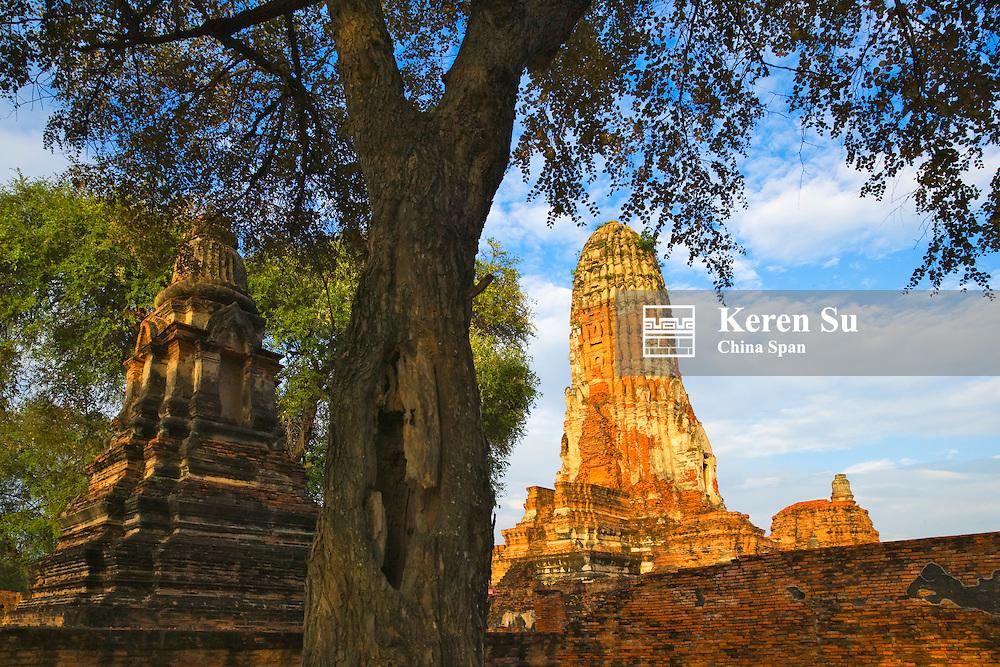 Wat Phra Ran, Ayutthaya Historical Park, UNESCO World Heritage site.