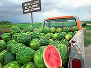 Watermelons in truck  Florida Everglades