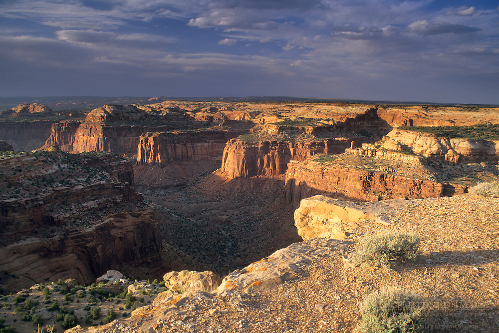 Looking over Trail Canyon from atop Aztec Butte, Island in the Sky District, Canyonlands National Park, UTAH