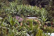 Ngiresi Village, close to Arusha, Tanzania.