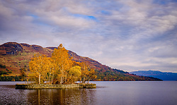 Loch Katrine at Stronachlachar, Loch Lomond &amp; The Trossachs National Park, Scotland<br /> <br /> (c) Andrew Wilson | Edinburgh Elite media