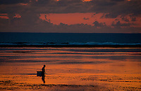 Seaweed gatherer at dawn off Sanur Beach in Bali, Indonesia