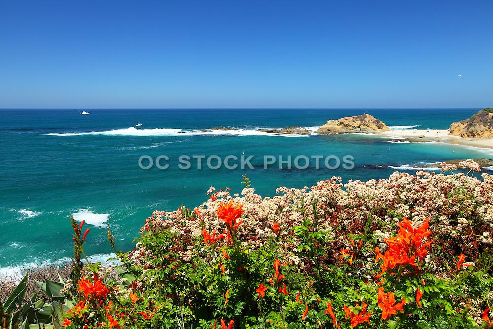 Scenic View of Laguna Beach Coast