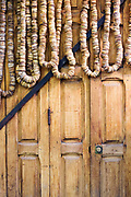 FEZ, MOROCCO - 1st FEBRUARY 2018 - Close-up of figs hanging to dry on a wooden door at a market stall in the old Fez Medina, Middle Atlas Mountains, Morocco.
