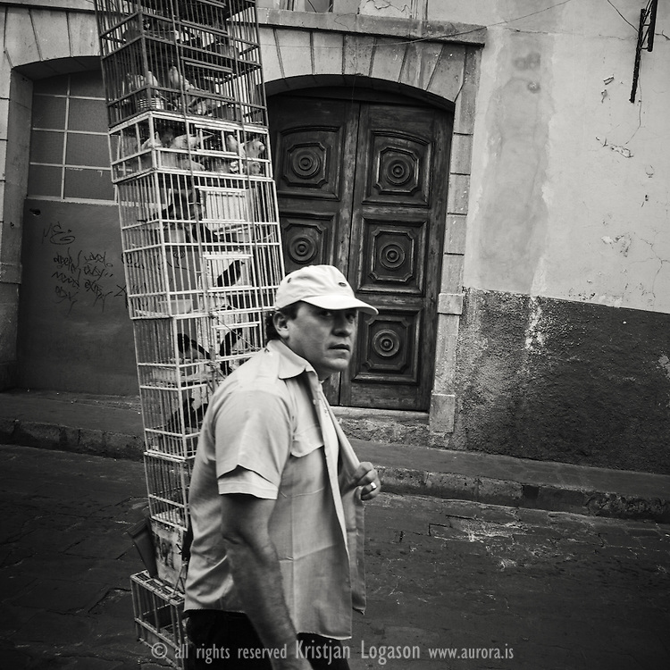 Street vendor carrying lot of birds in cagees on his way to the market