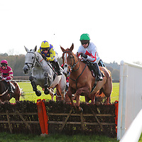 Lingfield 26th November