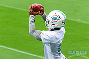 Miami Dolphins running back Mark Walton(9) catches a pass during Minicamp at the Baptist Health Training Facility at Nova Southeastern University, Wednesday, June 5, 2019 in Davie, Fla. (Kim Hukari/Image of Sport)