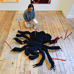 "© Licensed to London News Pictures. 13/02/2020. LONDON, UK. A staff member views ""8 Legs, 2 Fangs, An attitude"", 2019, by Millie Layton.  Preview of ""Premiums Interim Exhibition"", an exhibition of new work by second year students in the Royal Academy Schools.   Works by 16 artists are on show 13 February to 11 March 2020 at the Royal Academy of Arts in Piccadilly by artists at the interim point of their postgraduate study at the UK's longest established art school.  Photo credit: Stephen Chung/LNP"