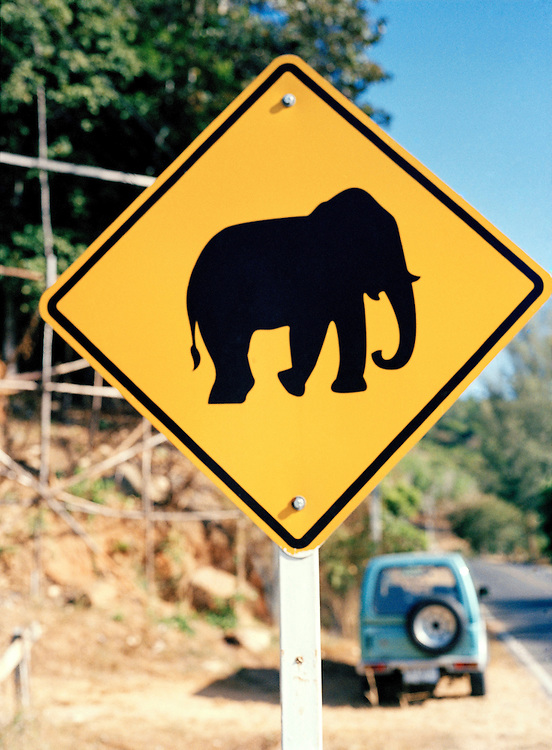 Elephant crossing sign