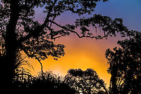 A colorful sunset silhouette of tropical trees and savanna on the slopes of Mount Rinjani, Lonbok. Nature photography by Djuna Ivereigh.