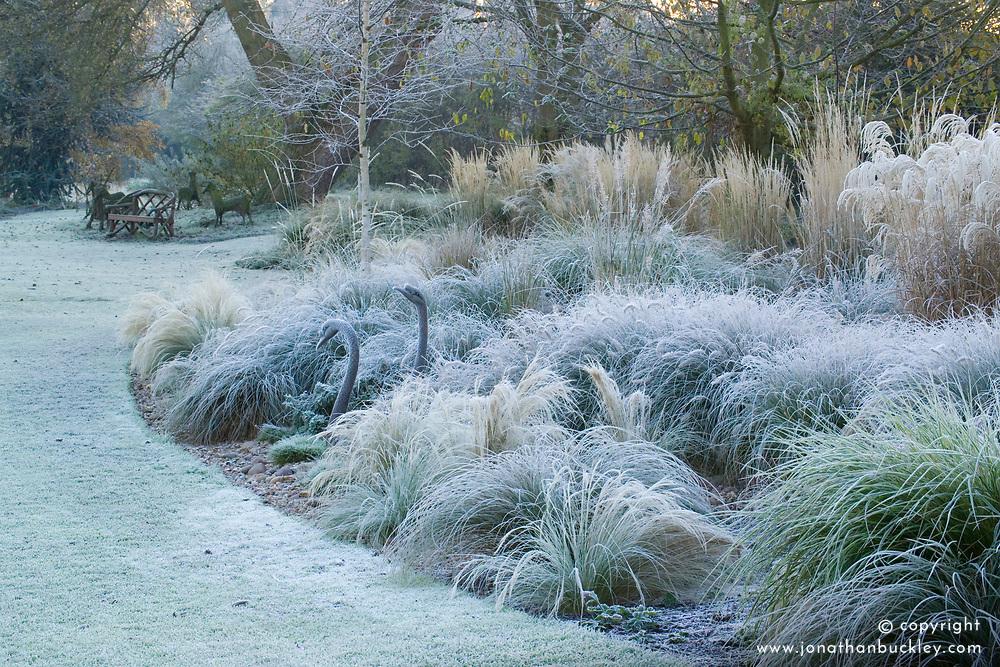 Looking across the grasses border in John Massey's garden on a frosty winter's morning. Bronze swan and woven deer sculptures. Design: John Massey, Ashwood Nurseries
