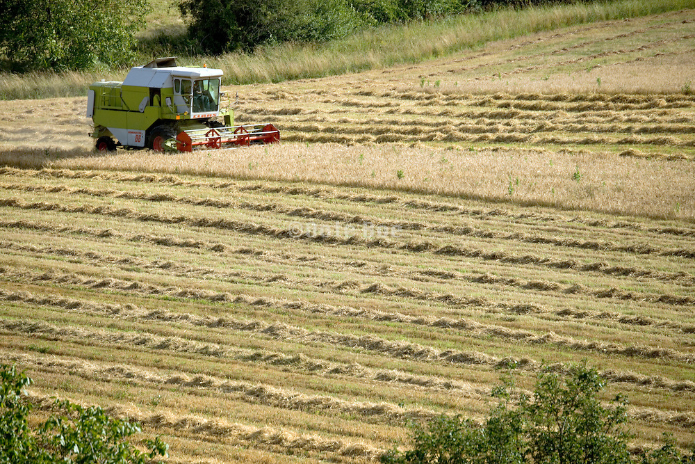 wheat harvesting France
