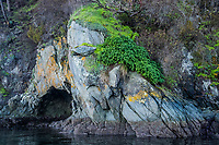 A rocky outcrop on the shores of Second Sister Island in the Gulf Islands of British Columbia, Canada.