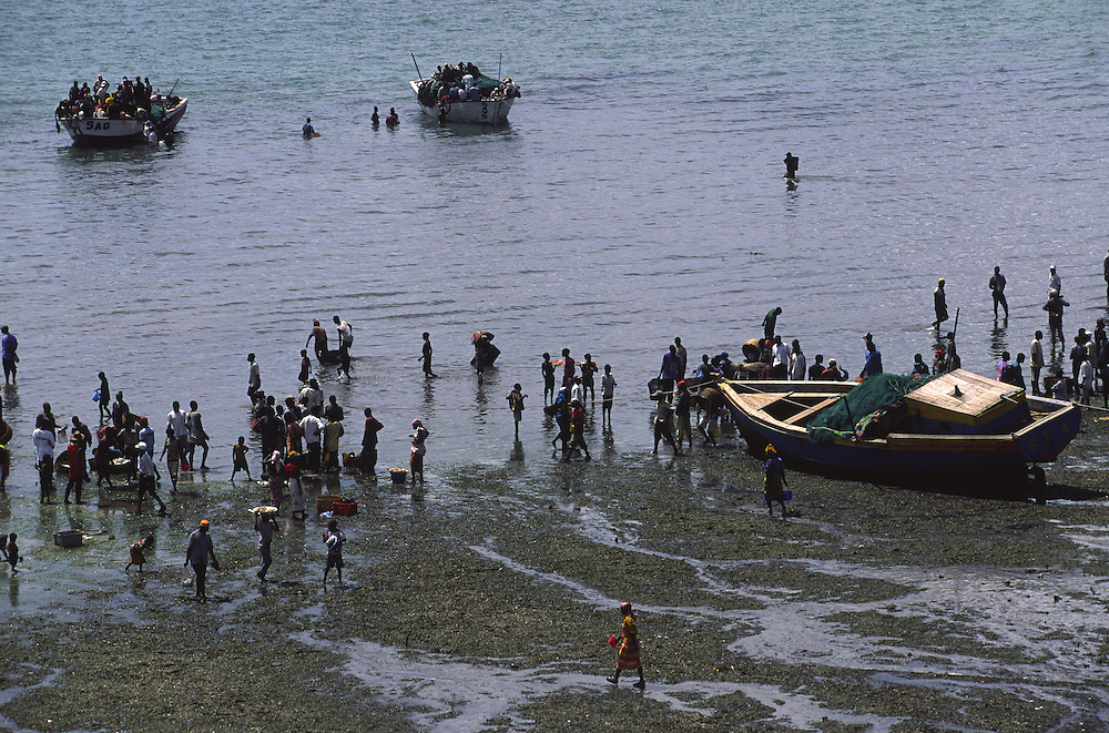 Fishermen arriving at the beach that serves as Ilha de Mozambique fishing harbour