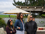Point Reyes Farmstead Tour