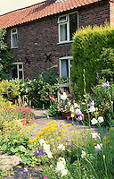 cottage garden with mixed planting