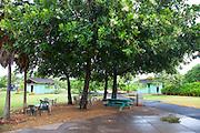 Maui Nui Botanical Gardens, Kahului, Maui, Hawaii
