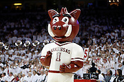 FAYETTEVILLE, AR - NOVEMBER 30:  Mascot of the Arkansas Razorbacks during a game against the Syracuse Orangemen at Bud Walton Arena on November 30, 2012 in Fayetteville, Arkansas.  The Orangemen defeated the Razorbacks 91-82.  (Photo by Wesley Hitt/Getty Images) *** Local Caption ***