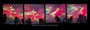 Northern Lights aurora borealis panorama, panoramic Upper Peninsula of Michigan