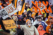 Cincinnati Bengals fans cheer and wave signs during the Cincinnati Bengals NFL AFC Wild Card playoff football game against the Pittsburgh Steelers on Saturday, Jan. 9, 2016 in Cincinnati. The Steelers won the game 18-16. (©Paul Anthony Spinelli)