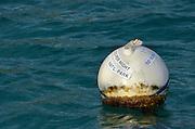 Mooring ball, Virgin Islands National Park, St. John, U.S. Virgin Islands.