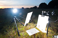 Field studio set up to photograph a Serapias orchid. Europe; Spain; Andalucia; Camino de Bodegones; vegetation flowering plant orchid photographic equipment; vertical; bright technical; black white green; wild; damp grassland; 2009; April; spring; strobe backlight