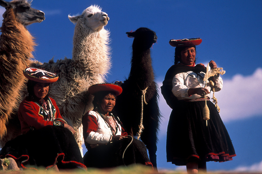 Pisaq Indians spinning llama wool at Sacsayhuaman, whilst tending their llamas, Cuzco, Peru
