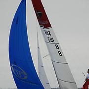 Voile Légère Catamaran de sport