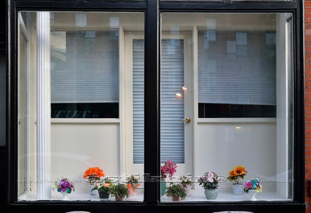 Windows in Brooklyn New York City