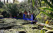 MAROC, Marrakesh: i giardini di Majorèl,