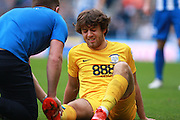 Preston North End midfielder Ben Pearson (4) receives treatment for an injury during the EFL Sky Bet Championship match between Brighton and Hove Albion and Preston North End at the American Express Community Stadium, Brighton and Hove, England on 15 October 2016. Photo by Bennett Dean.