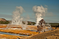 Geysers show their stuff throwing steam into the air on a nice fall morning.