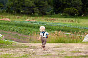 Wild Shepherd Farm, Athens, Vermont. For the Vermont Land trust