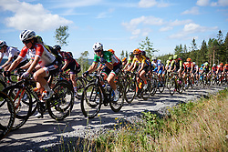 Marta Bastianelli (ITA) in the bunch during Ladies Tour of Norway 2019 - Stage 4, a 154 km road race from Svinesund to Halden, Norway on August 25, 2019. Photo by Sean Robinson/velofocus.com