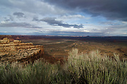 The Bears Ears National Monument protects 1.35 million acres of public land encompassing the Bears Ears, a region steeped in rich cultural history, with sites sacred to Native American tribes. A coalition of Native American tribes comprised of Navajo, Hopi, Zuni and Ute are fighting to protect these culturally significant sites and continue to support monument status.